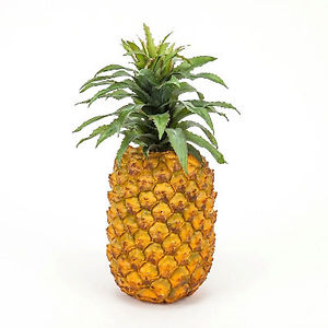 Pineapple Early